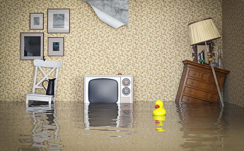 How to Clean Up & Prevent Damage After a Flood in the Basement