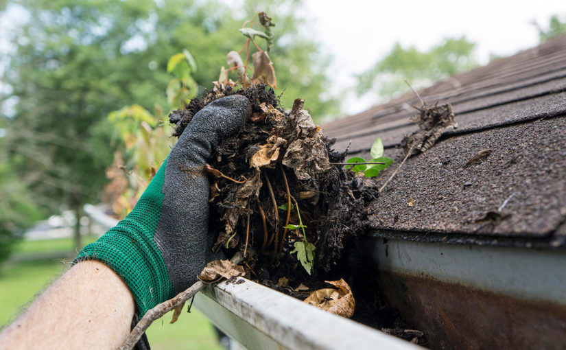Best Tips & Gadgets to Prevent Clogged Gutters & Home Flooding